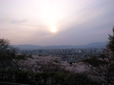 kyotosakura16