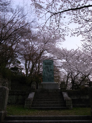 kyotosakura17