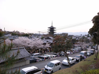 kyotosakura20